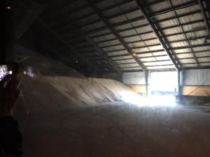 raw sugar storage